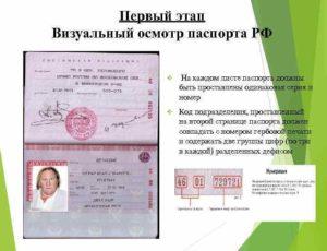 Сколько в российском паспорте листов