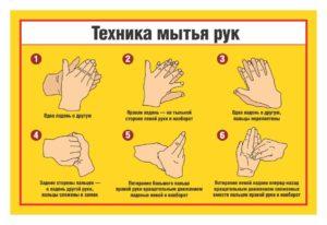 Правила мытья рук в общепите инструкция