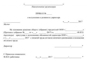 Образец приказа на генерального директора рк