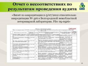 Сводный отчет о проведении внутренней проверки смк