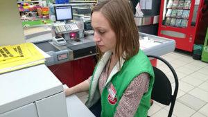 Должна ли оплачиваться стажыровка в магазине пятерочка