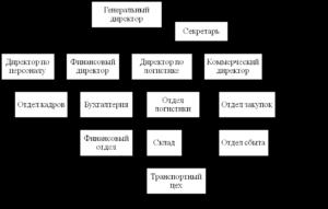 Организационная структура предприятия ооо образец схема с описанием в ворде