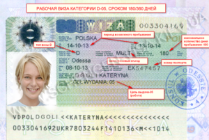 Мультивиза и шенгенская виза отличие