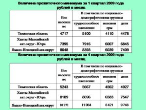 Сколько прожиточный минимум в хмао г нижневартовск 2019г